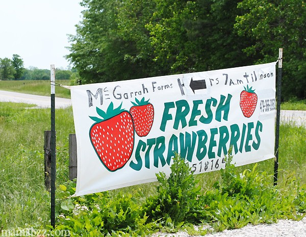 McGarrah-Farms-Fresh-Strawberries-Sign