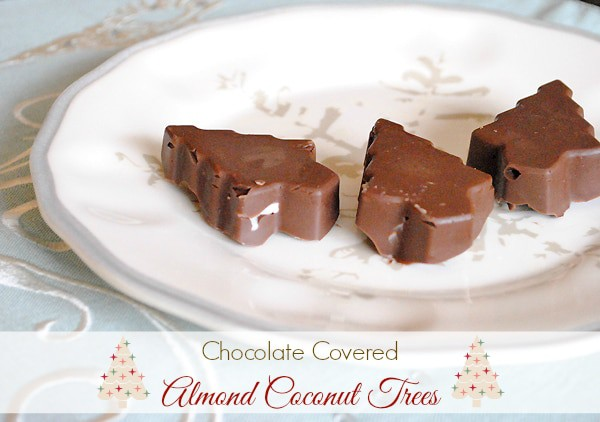 Almond Coconut Chocolate Bark Christmas Trees from MamaBuzz {mamabzz.com}
