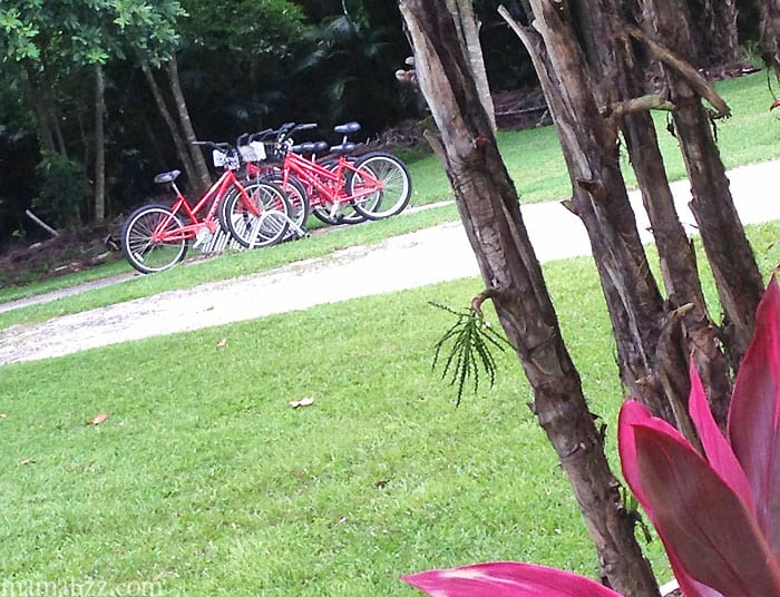 Bikes to rent at Anchor Inn and Cottages on Sanibel Island