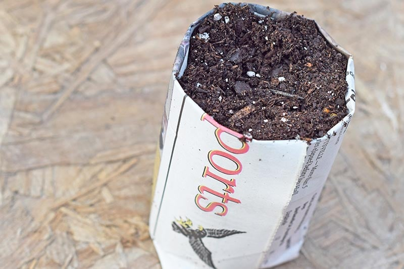 Seed starting is a family affair and a great spring time activity in anticipation of gardening season. Learn how to create your own DIY newspaper seed pots for garden seeds. Re-purpose and re-use with newspaper seedling pots. | #EveryDayCare