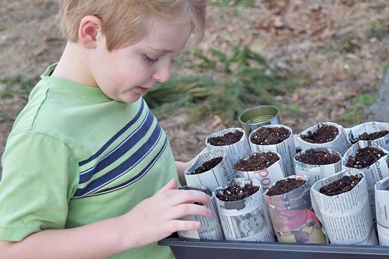 boy child starting seeds in newspaper seedling pots