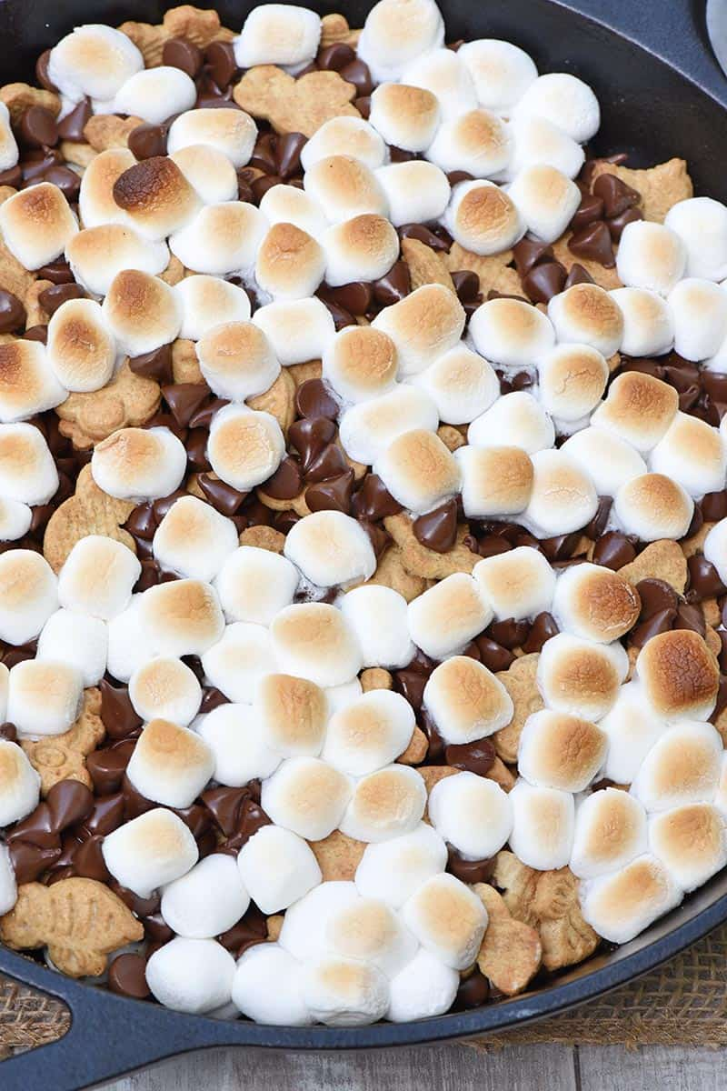How to make scrumptiously easy skillet s'mores, using chocolate, graham crackers, and mini marshmallows. Yum!