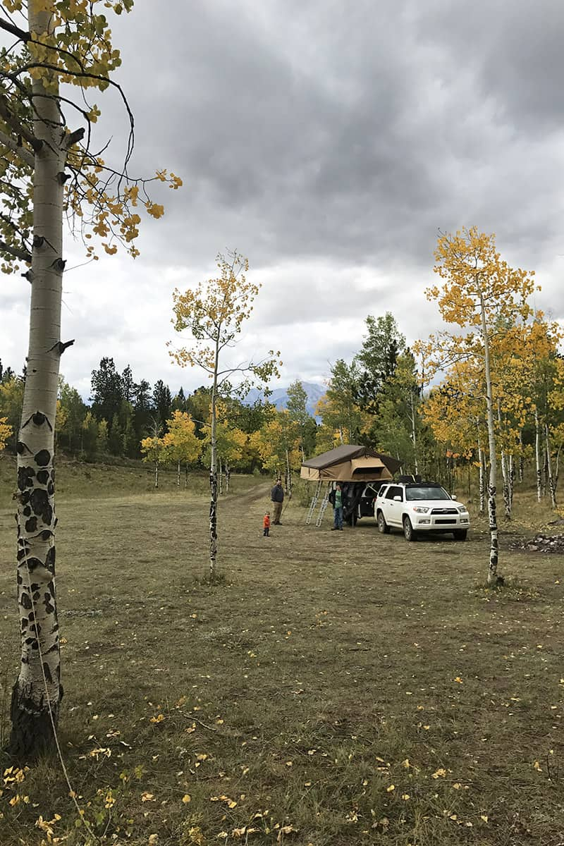 dispersed camping in an aspen grove with a rooftop tent in Colorado