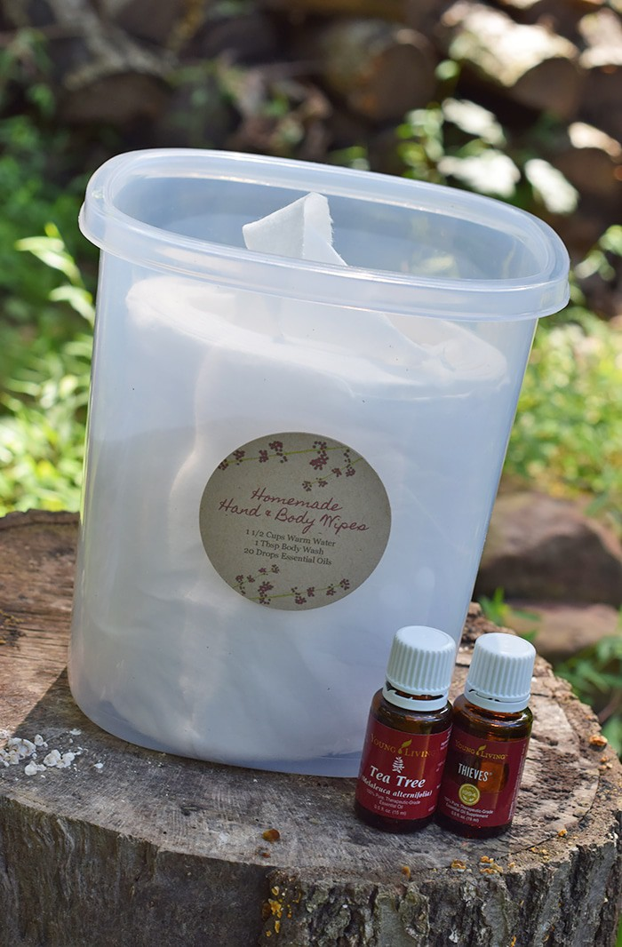 Homemade Hand And Body Wipes For Camping Adventures Of Mel