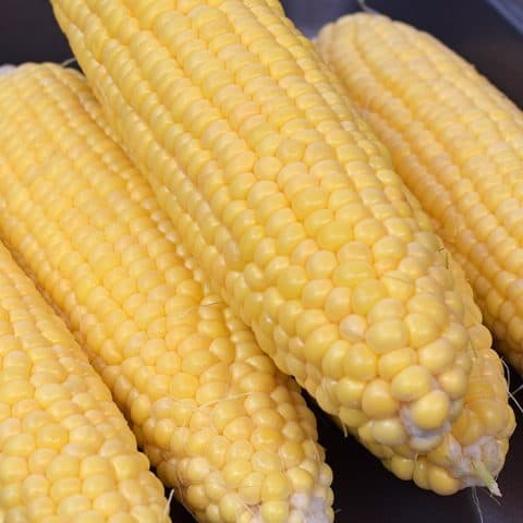 Delicious Instant Pot Corn on the Cob