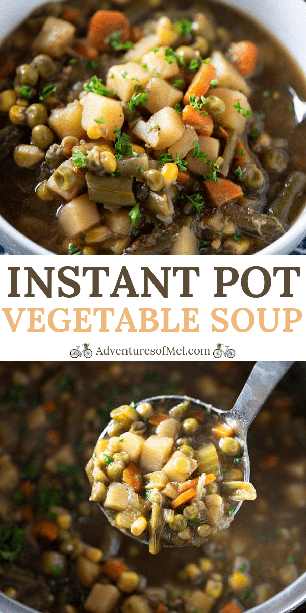 Dump and Go Instant Pot Vegetable Soup Recipe