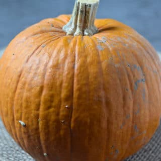 I love using pumpkin I roast myself for pumpkin pie, pumpkin roll, and more. It's super easy to make homemade pumpkin puree, and it's so delicious!