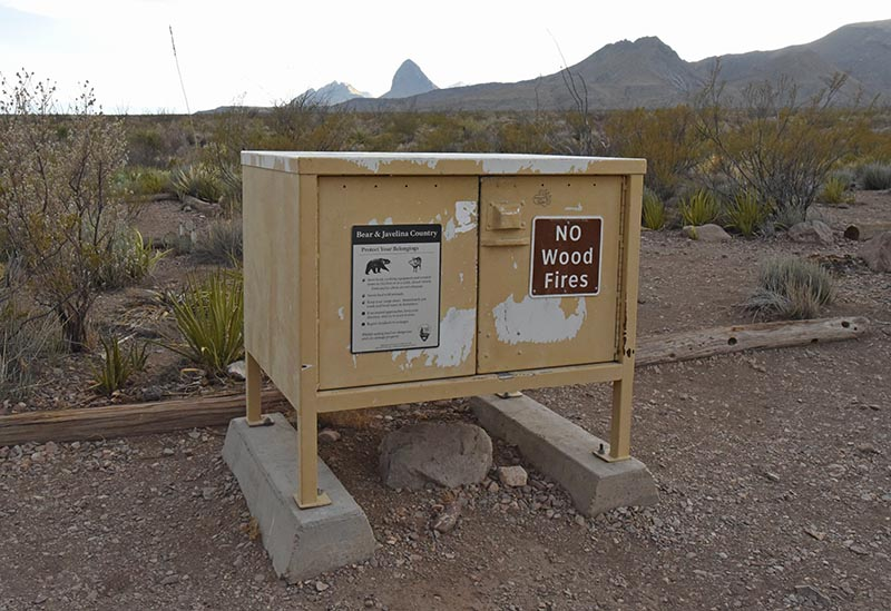 bear box at Robbers Roost campsite, with a view of Elephant Tusk, in Big Bend National Park