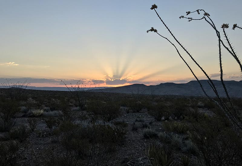 desert sunrise while Big Bend camping in Texas