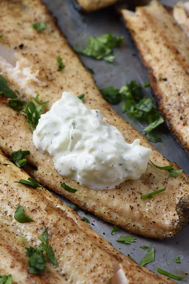 grilled fish fillets served with tzatziki sauce