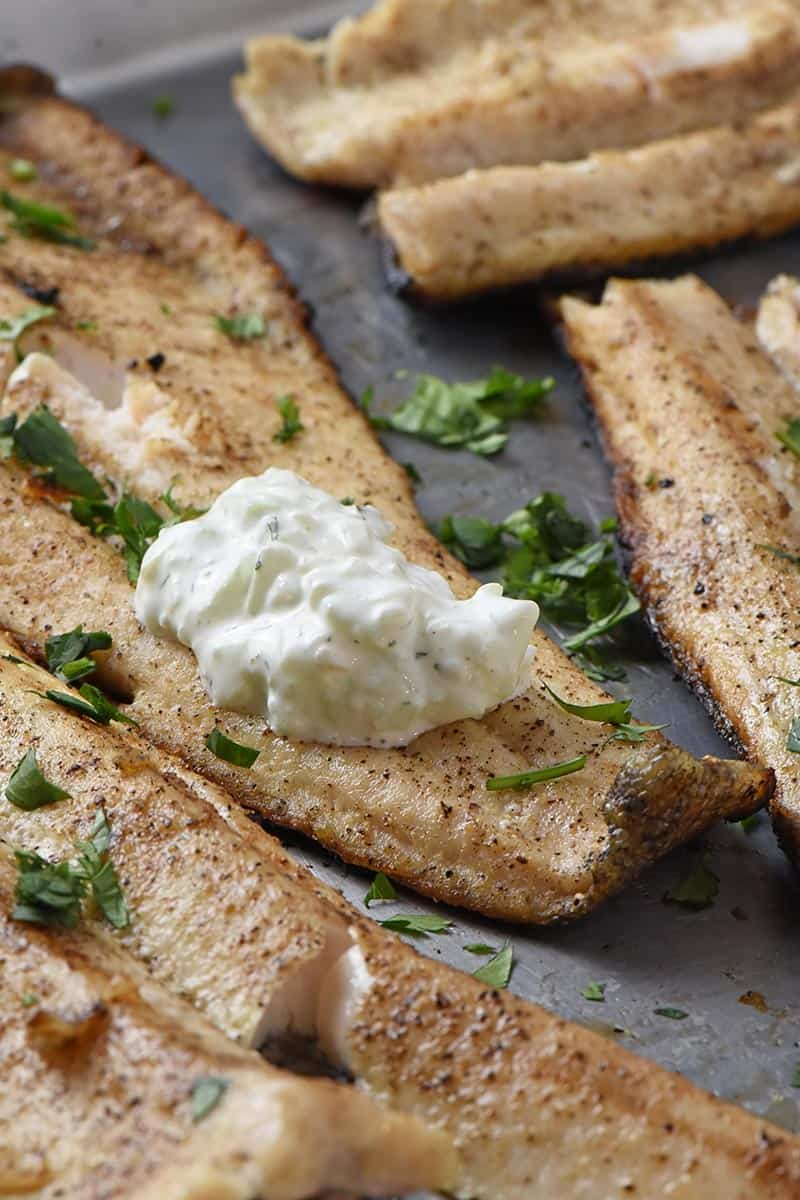 low carb tzatziki sauce on grilled trout