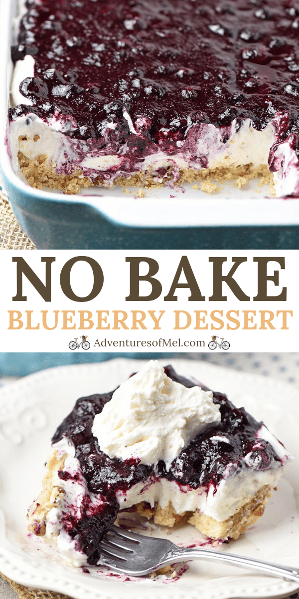dreamy no bake blueberry dessert recipe