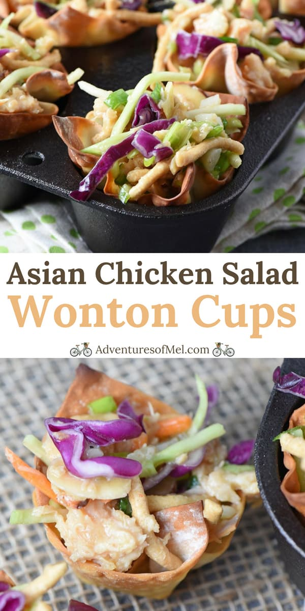 Asian Chicken Salad Wonton Cups Recipe