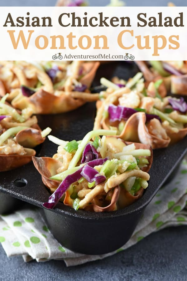easy wonton appetizers, Asian Chicken Salad Wonton Cups