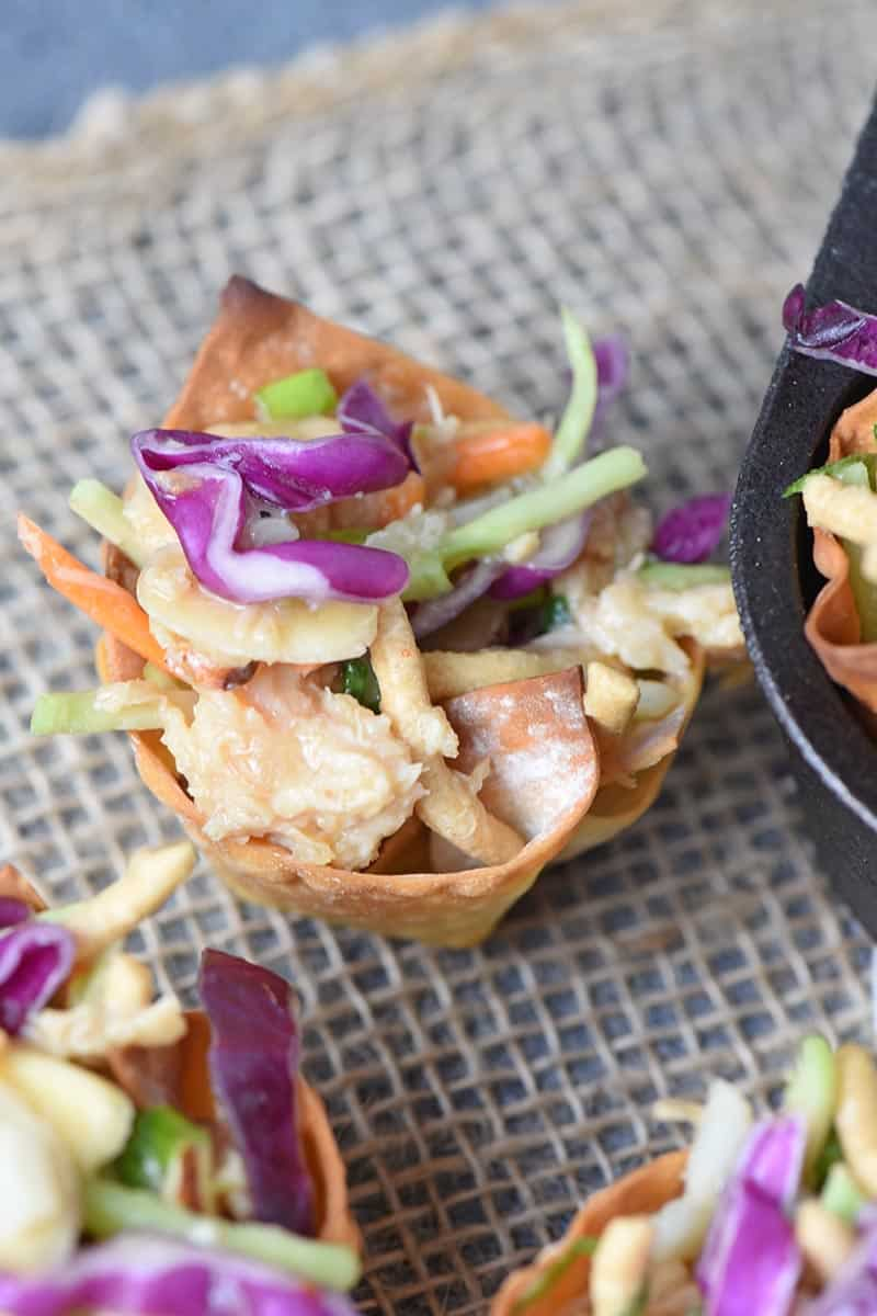 easy chicken salad recipe and wonton recipe with Asian flavors