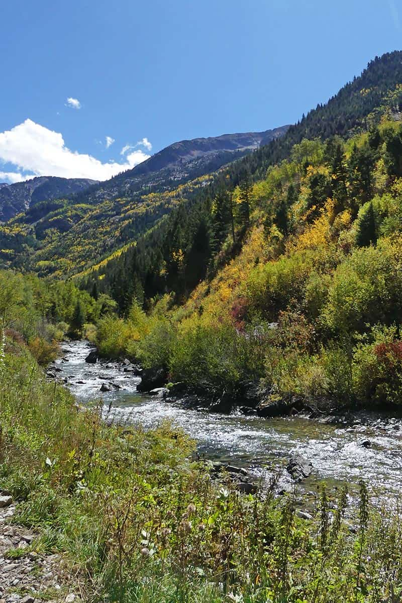 Crystal River and golden yellow aspens in a Colorado fall
