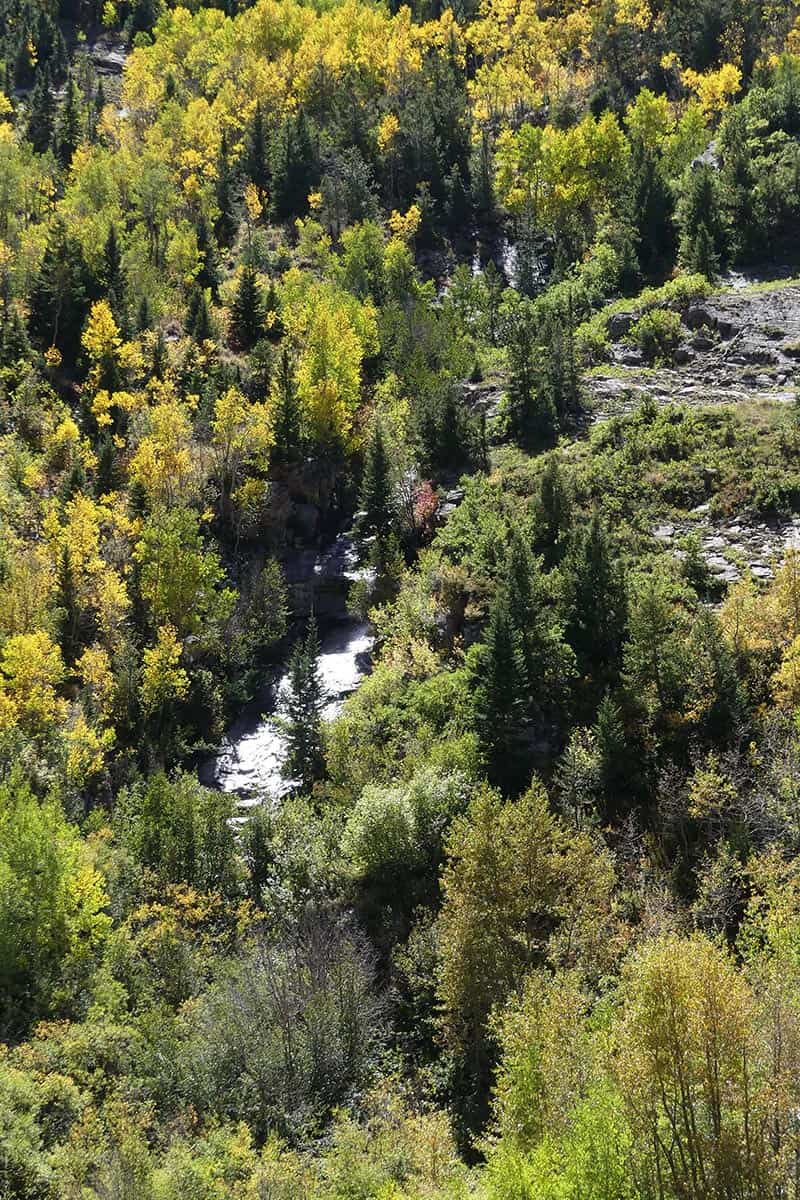 waterfall on road to Crystal Mill, Colorado