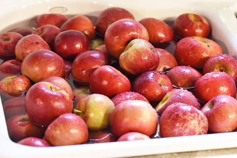 washing apples in sink for cinnamon applesauce recipe