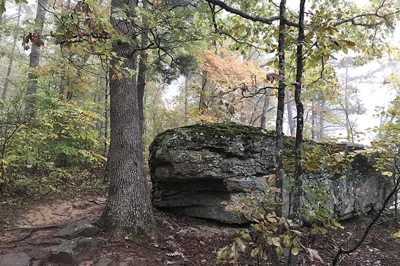 boulder on Hawksbill Crag Trail