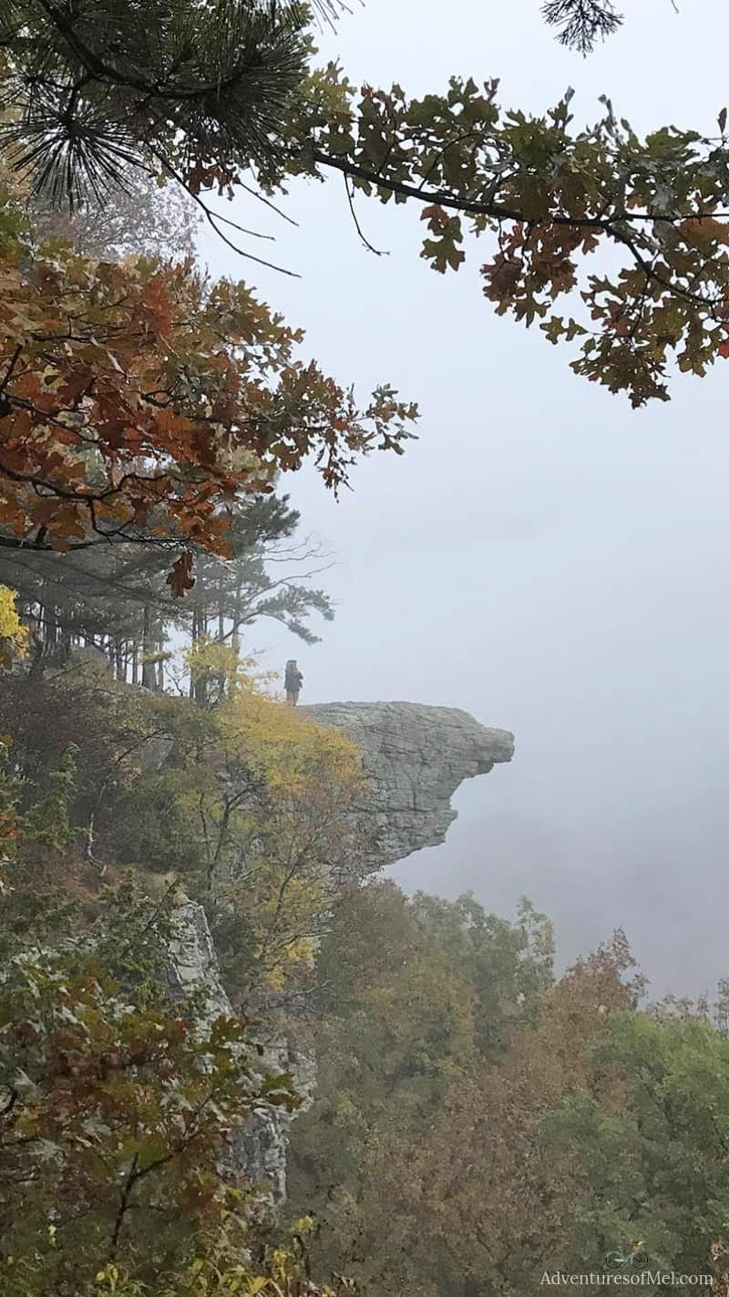 what it's like hiking Hawksbill Crag or Whitaker Point Arkansas