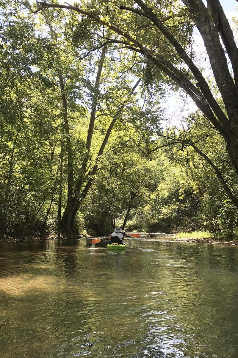 kayaking under trees on the beautiful Current River in Missouri