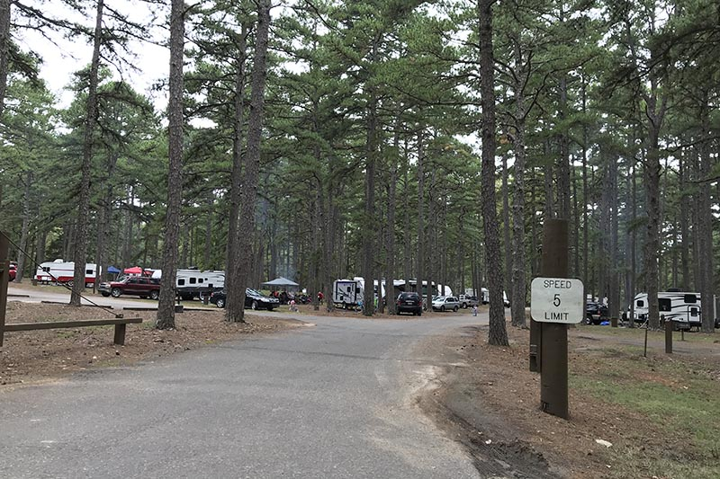 more open but wooded campsites in Petit Jean State Park