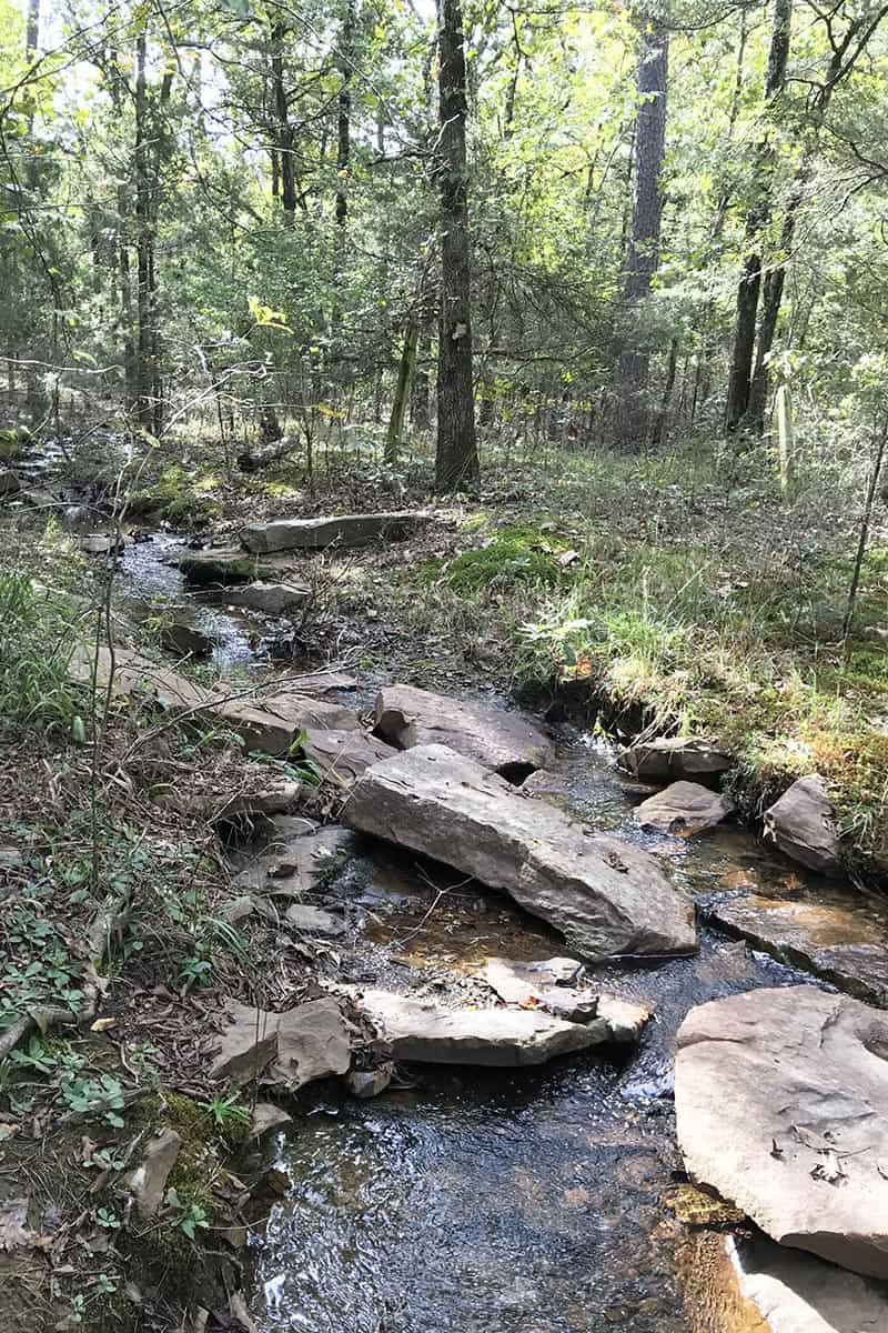 wooded stream in Petit Jean State Park campground
