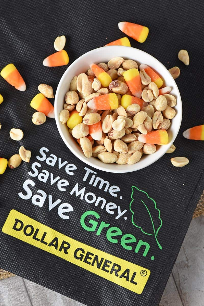 candy corn and peanuts with Dollar General shopping bag