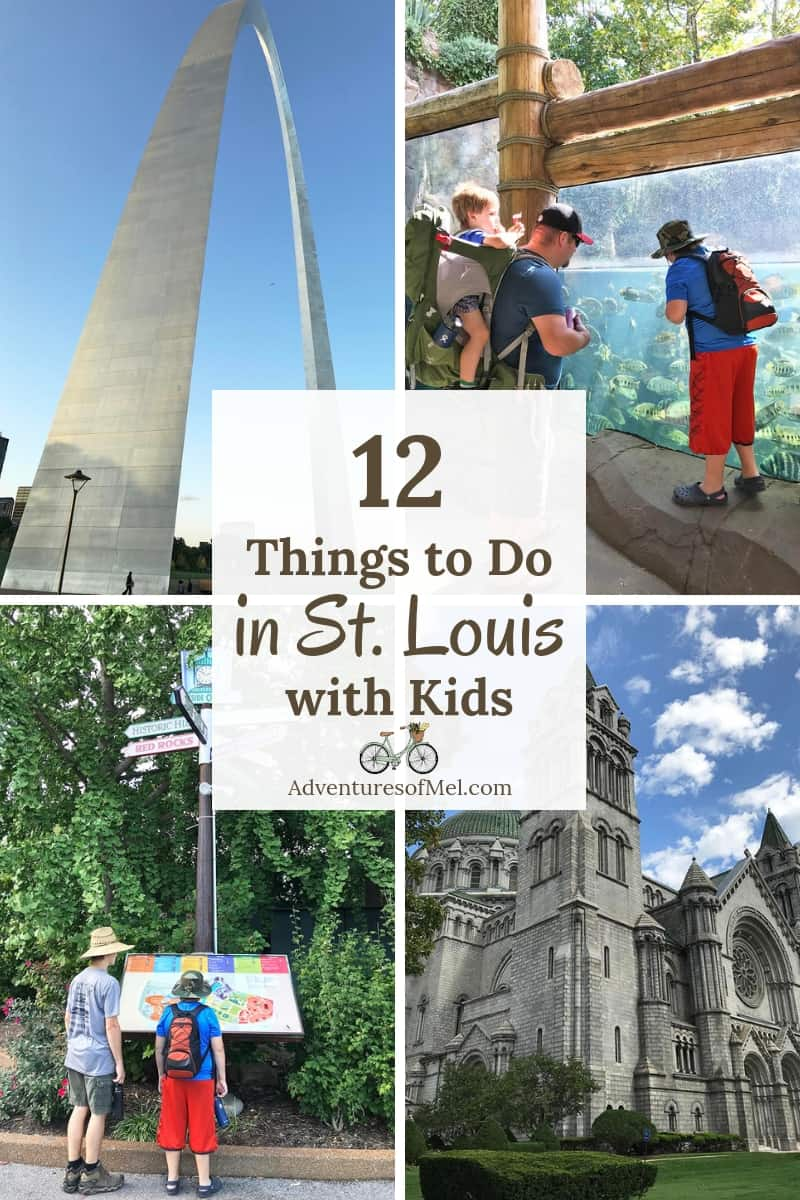12 things to do in st. louis with kids