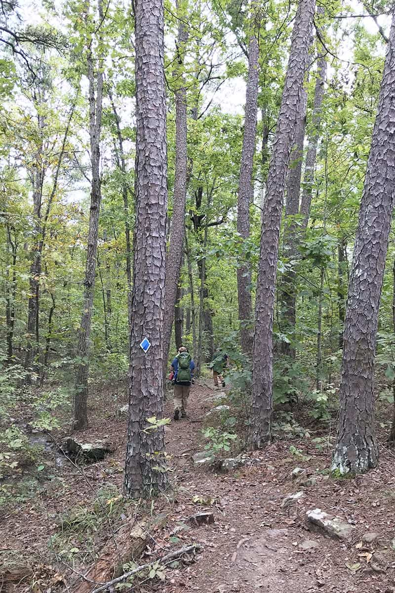 hikers hiking through the forest of Seven Hollows Trail in Petit Jean State Park in the Natural State