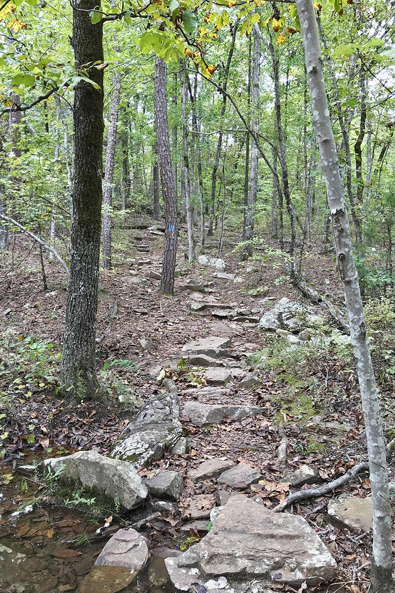 rocky descent on Seven Hollows Trail in Petit Jean State Park in Arkansas