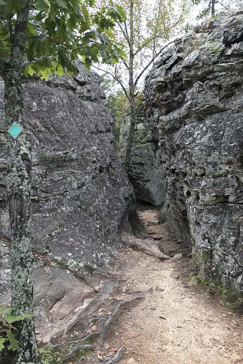 green trail marker on tree and narrow crevice trail along Bear Cave Trail in Petit Jean