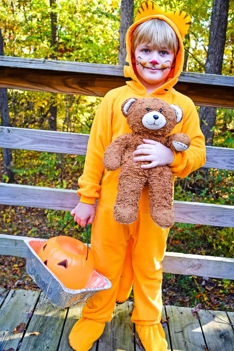 Garfield outfit with Pooky the Teddy Bear and costume makeup whiskers