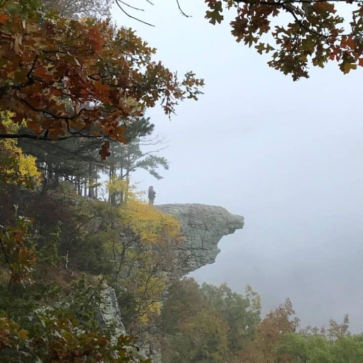 Hiking Hawksbill Crag in the Natural State
