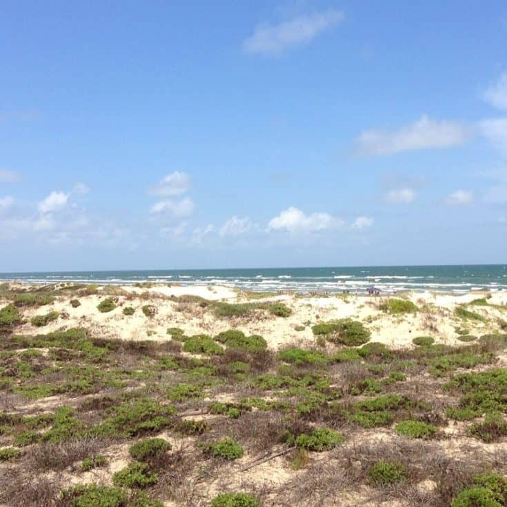 Hit the Beach at Padre Island National Seashore