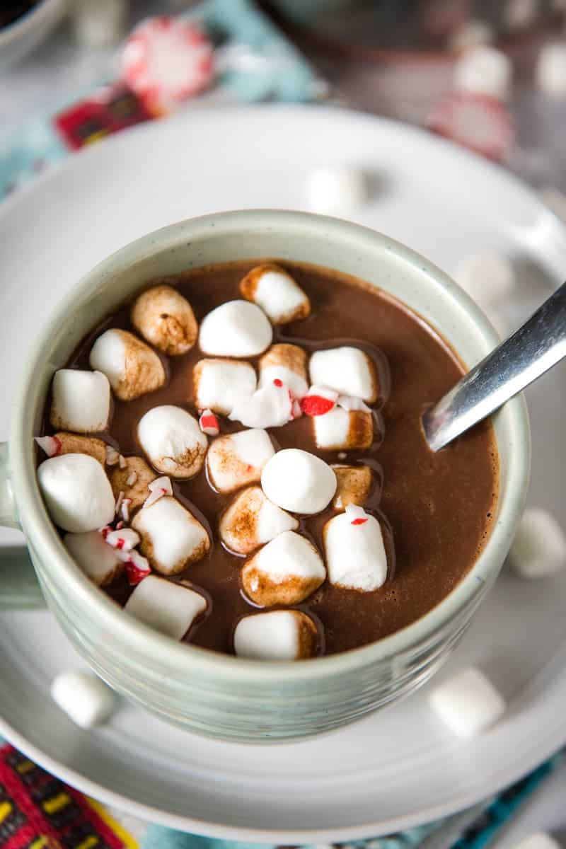 light blue mug of homemade hot chocolate with mini marshmallows and peppermint, sitting on gray plate