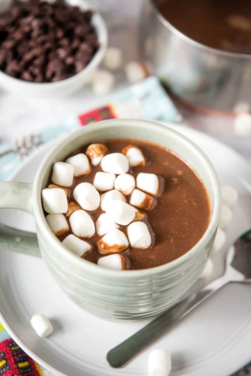 light blue mug of hot chocolate with chocolate chips, topped with mini marshmallows, sitting on gray plate with spoon and more marshmallows