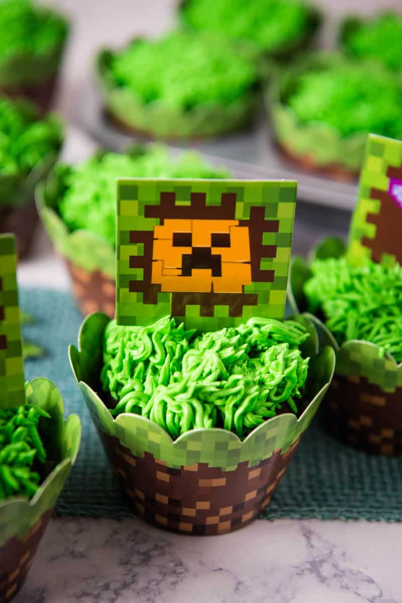 Minecraft birthday cupcakes wrapped in Minecraft wrappers and topped with Creeper cupcake topper
