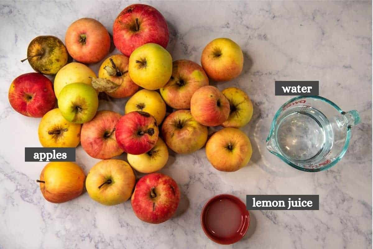 ingredients for pressure cooker applesauce, including apples, lemon juice, and water